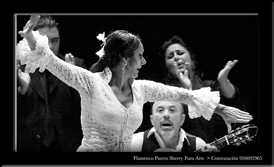 💃🏻 Flamenco en Galápagos, Guadalajara