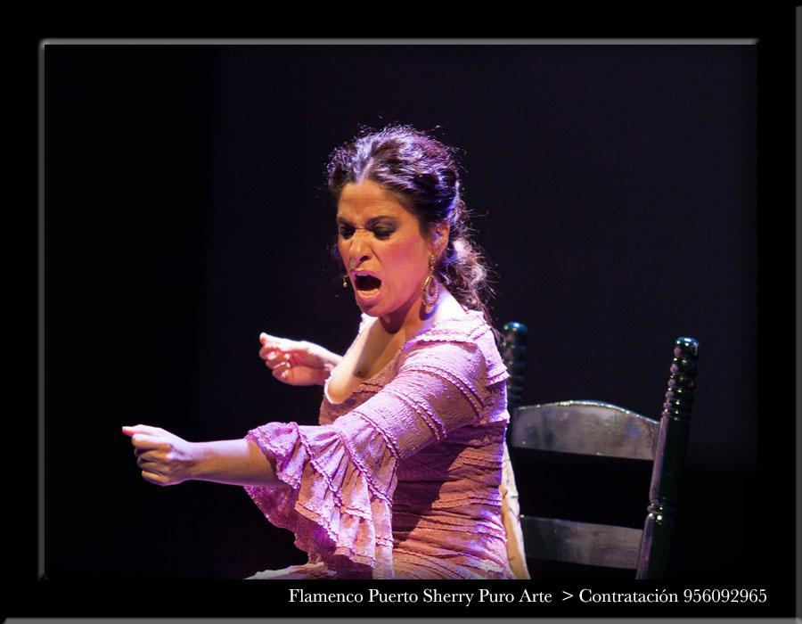 flamenco en Zaragoza