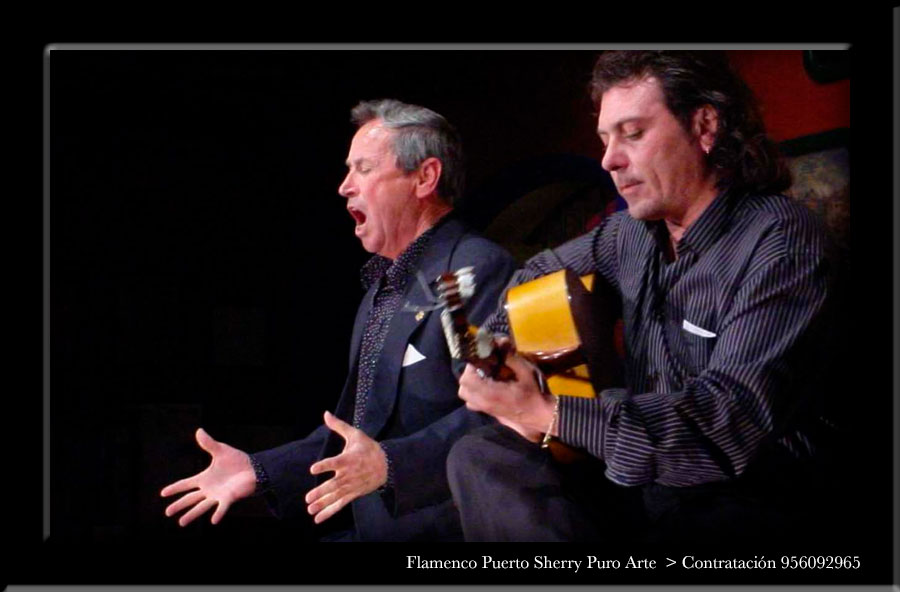 💃🏻 Flamenco en Monleón, Salamanca