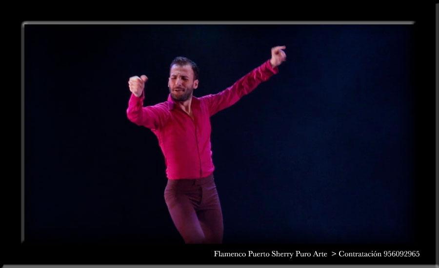 💃🏻 Flamenco en Galende, Zamora