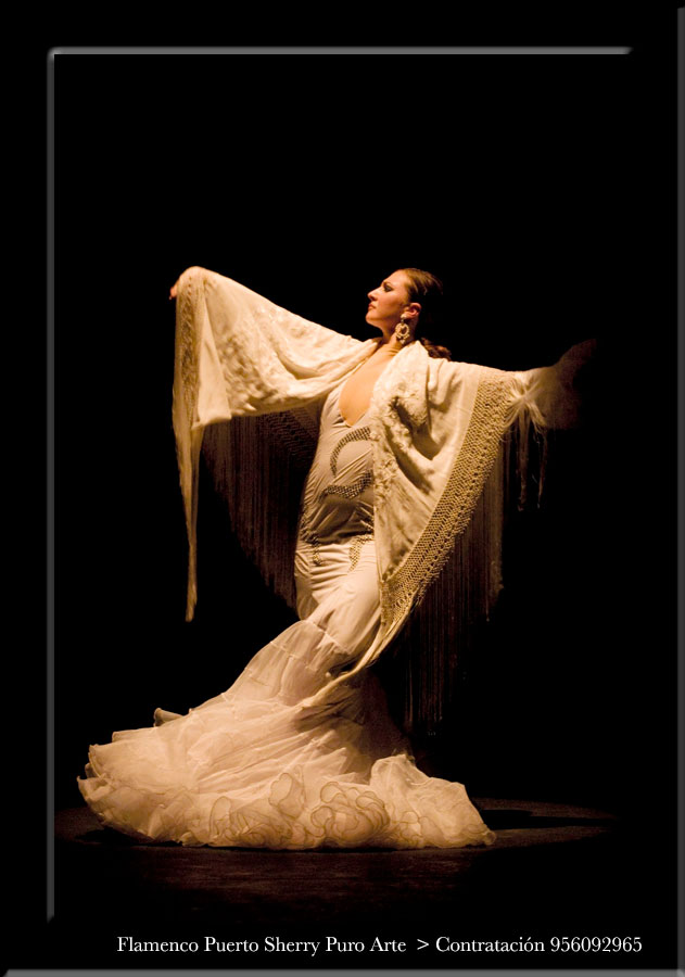 flamenco en Pontevedra
