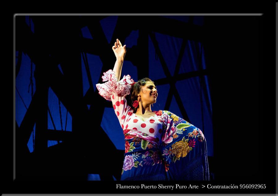 💃🏻 Flamenco en Asarta, Navarra
