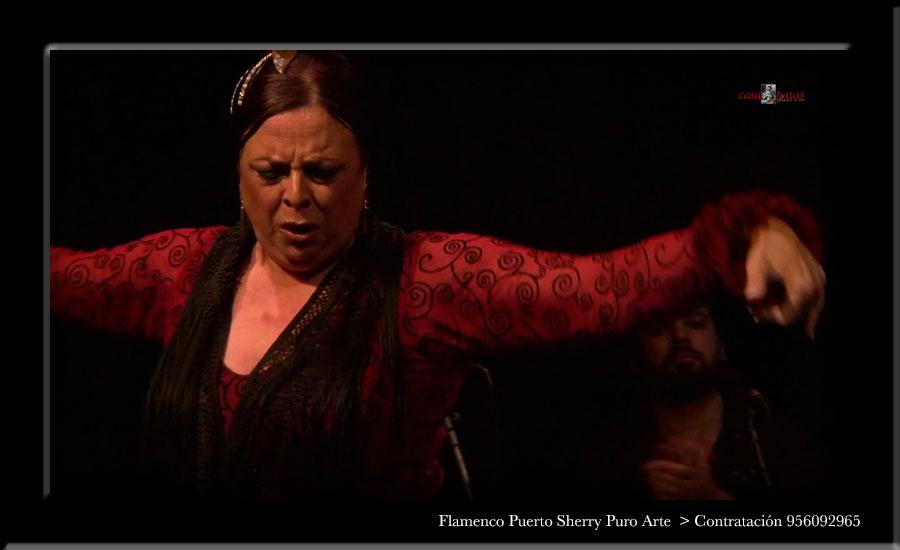 💃🏻 Flamenco en Fuidio, Burgos