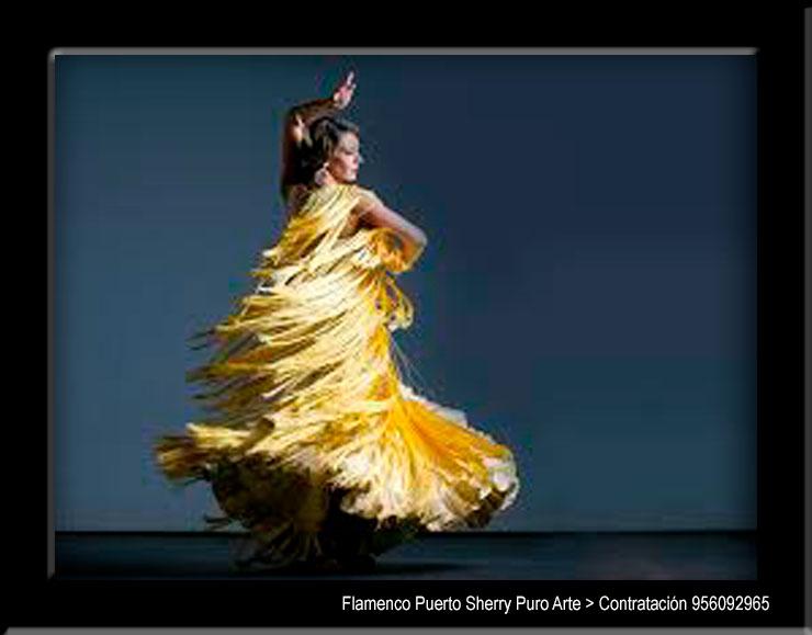 flamenco en Segovia
