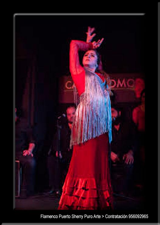 💃🏻 Flamenco en Paresotas, Burgos