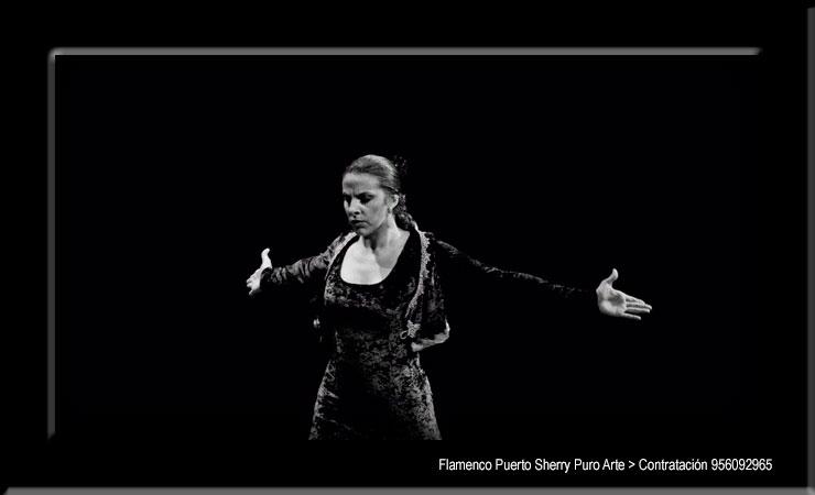 💃🏻 Flamenco en Urdazubi, Navarra