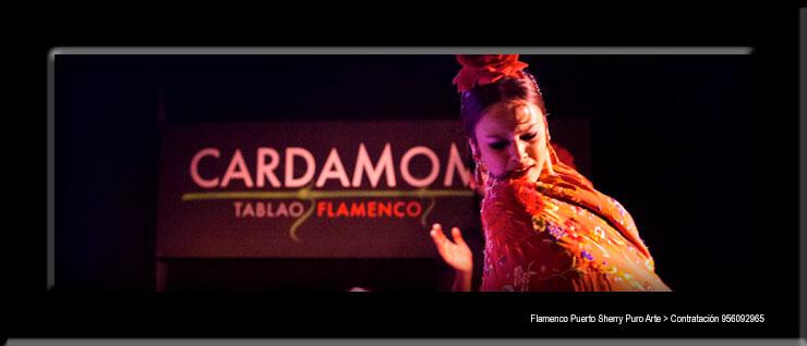 💃🏻 Flamenco en Campo, León