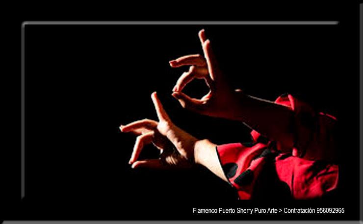 💃🏻 Flamenco en Salazar, Burgos