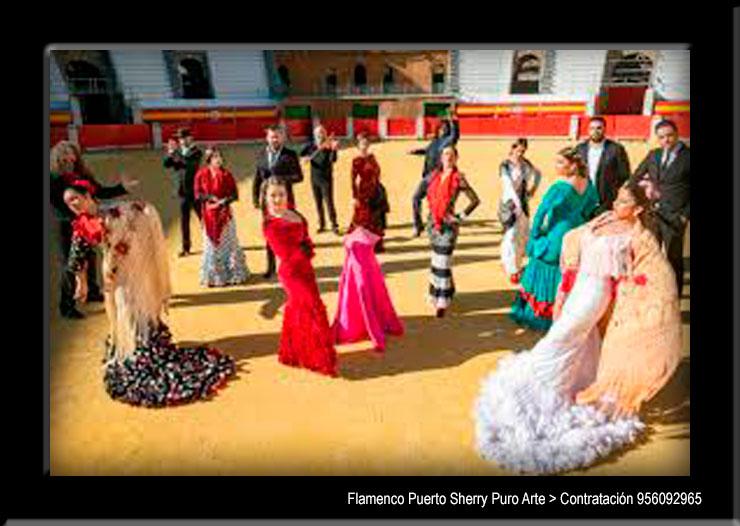💃🏻 Flamenco en Viana, Navarra
