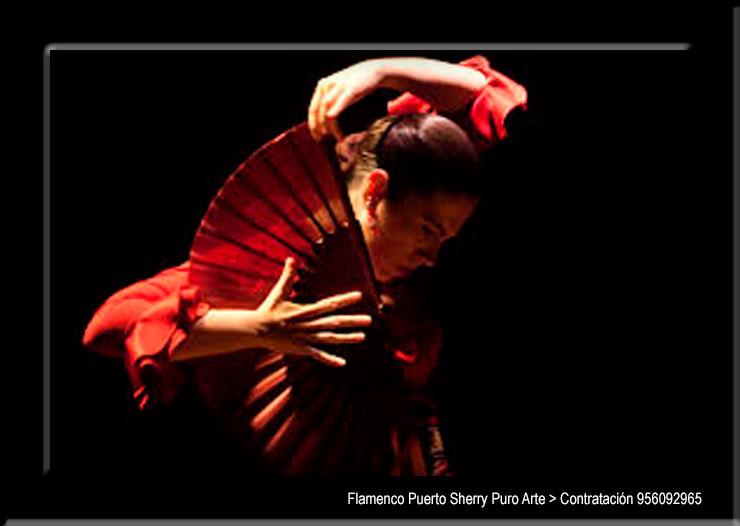 💃🏻 Flamenco en Alhambra, Ciudad Real