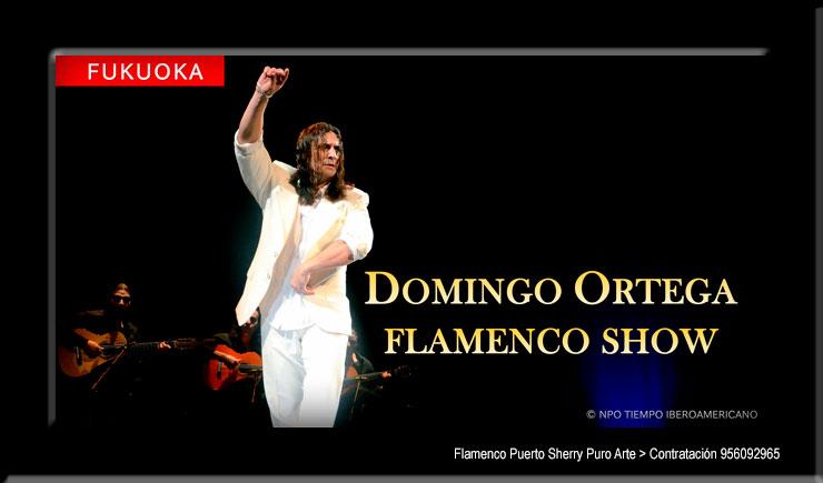 flamenco en Cuenca